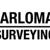 Carlomagno Surveying Inc
