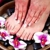 The Purple Orchid Spa