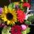 Diz's Daisys Flower Shop