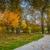 Forest Park Forever