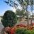 Laurel Land Mem Park - Dallas