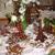 Lido Banquets