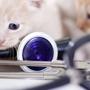 Coffee Road Veterinary Clinic