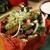Manuel's El Burrito Restaurant and Cantina