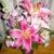 Zahn's Flowers & More Inc