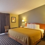 Quality Inn & Suites NRG Park - Medical Center