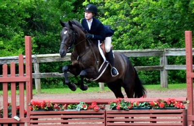 City View Equestrian, LLC - Bloomfield, NY