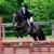 City View Equestrian, LLC
