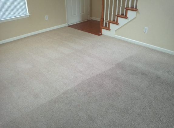 EverClean Carpet Cleaning - South Bend, IN
