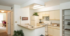 Castle Woods Apartments - Casselberry, FL
