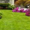 Nature's Design Landscaping