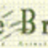 Olive Branch Counseling Associates, Inc.