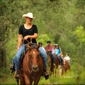 Diamond D Ranch - Jacksonville, FL