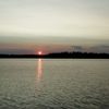 Loon Bay Cabins