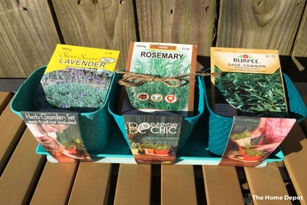Herbs and Seeds at The Home Depot