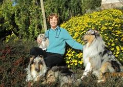 Irvington Pet Hospital - Fremont, CA