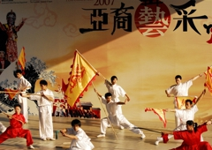Zhang Kung Fu Institute Inc - Union City, CA