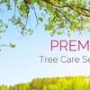 BRASWELL TREE SERVICE