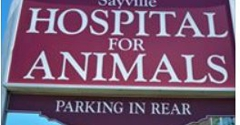 Sayville Animal Hospital - Sayville, NY