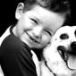 Companion Care Veterinary Clinic - Lincoln, NE