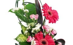 Hartman Floral & Greenhouses