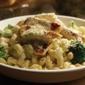 Olive Garden Italian Restaurant - Findlay, OH