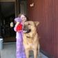 Madison Animal Control Office - Edwardsville, IL