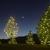 Denver Christmas Light Displays
