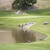 Eagle Springs Golf & Country Club