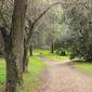 Alum Rock Park-San Jose City Of