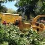 Your way Tree service - Tarzana, CA