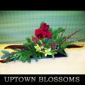 Uptown Blossoms - Anchorage, AK