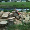 Precision Landscaping & Tree Service