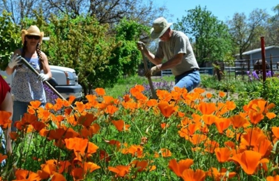 Greer Bill Landscaping - Red Bluff, CA