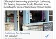 Gatlinburg Dog Grooming - Gatlinburg, TN