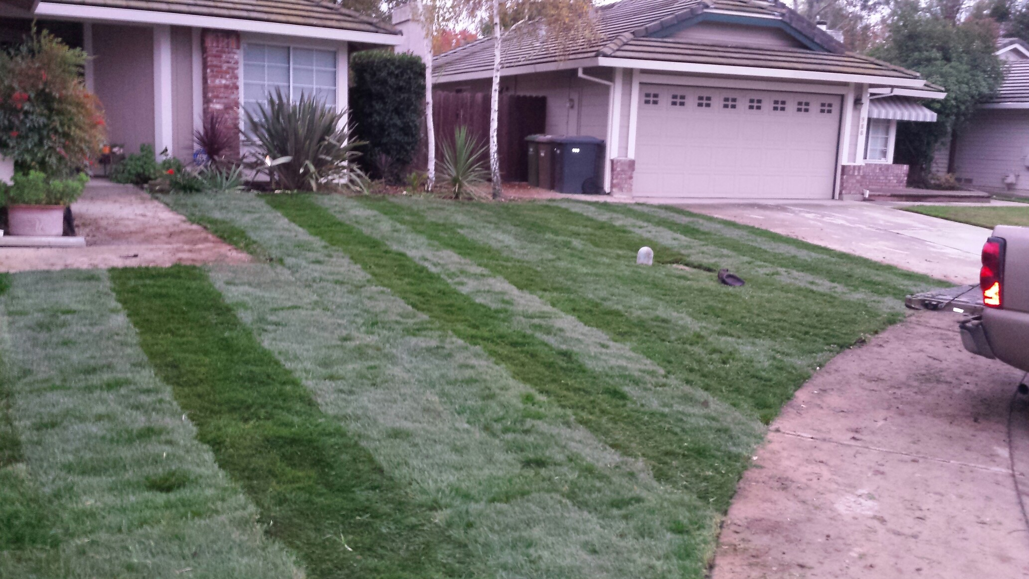 Soto s Yard Maintentance & Design 408 Almond Dr Lodi CA