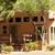 Sedona Pines Resort