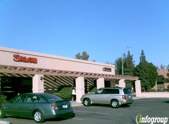 Lulu's Taco Shop - Gilbert, AZ