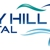 Bay Hill Dental