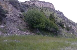 Limestone Cliff near Lewis and Clark Caverns