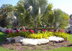 Delray Discount Landscaping Services - Delray Beach, FL
