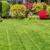 Goliath Tree & Lawn Service