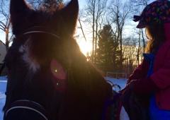 Horsefaire - Glastonbury, CT