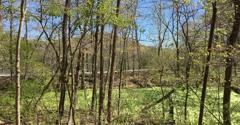 Radnor Lake State Natural Area - Nashville, TN