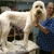 Care Animal Clinic