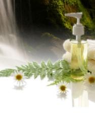 New Horizon Therapeutic Massage