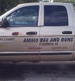 Ammo Bee & Guns - Caledonia, NY