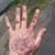 L A Tattooing