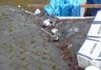 Fivecoat Roofing Inc. - Hillsboro, OR