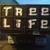 aaa roger waldman's tree service